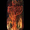 235x150 0171 Suma Striborova Thumb
